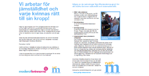 MQ-flyer blogg
